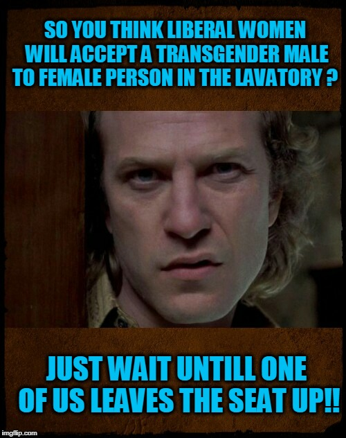 don't leave the seat up | SO YOU THINK LIBERAL WOMEN WILL ACCEPT A TRANSGENDER MALE TO FEMALE PERSON IN THE LAVATORY ? JUST WAIT UNTILL ONE OF US LEAVES THE SEAT UP!! | image tagged in buffalo bill,are you serious,transgender | made w/ Imgflip meme maker