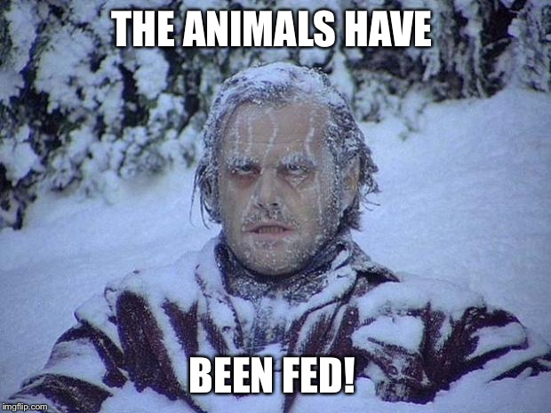 Jack Nicholson The Shining Snow Meme | THE ANIMALS HAVE BEEN FED! | image tagged in memes,jack nicholson the shining snow | made w/ Imgflip meme maker