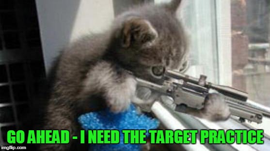 GO AHEAD - I NEED THE TARGET PRACTICE | made w/ Imgflip meme maker