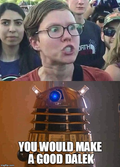 The Perfect Dalek? | YOU WOULD MAKE A GOOD DALEK | image tagged in triggered liberal,dalek | made w/ Imgflip meme maker