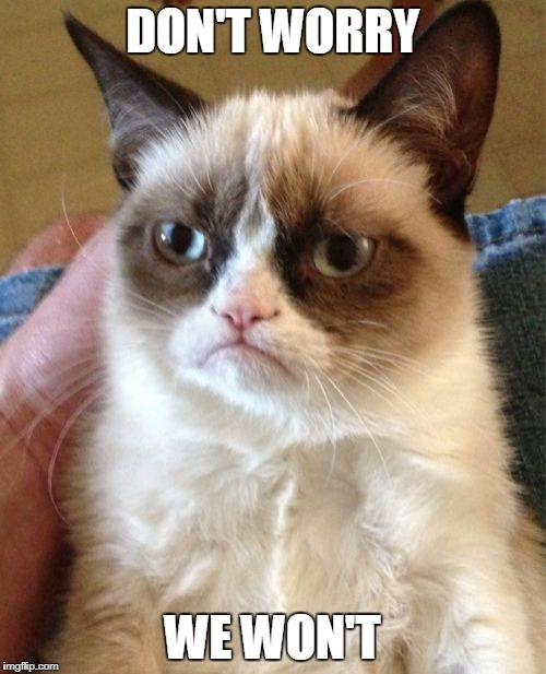 Grumpy Cat Meme | DON'T WORRY WE WON'T | image tagged in memes,grumpy cat | made w/ Imgflip meme maker