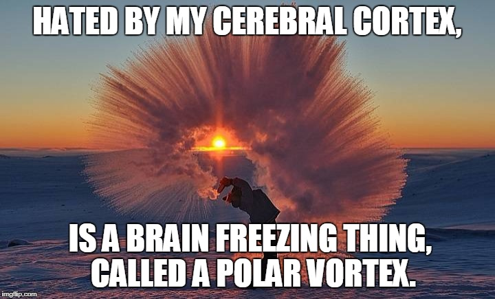 Too freakin' cold | HATED BY MY CEREBRAL CORTEX, IS A BRAIN FREEZING THING,  CALLED A POLAR VORTEX. | image tagged in polar vortex,brain freeze | made w/ Imgflip meme maker