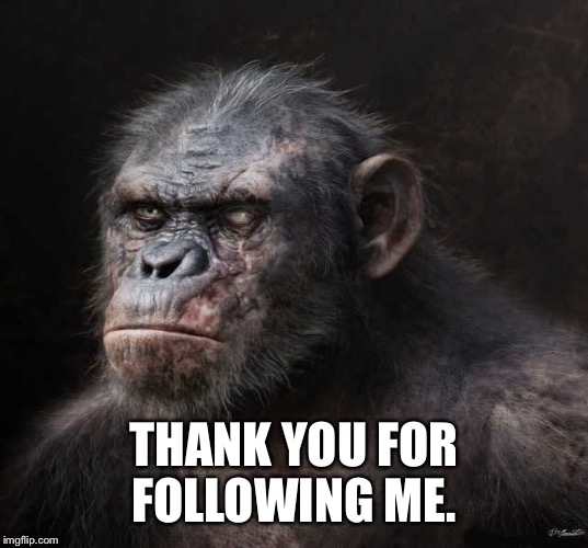 THANK YOU FOR FOLLOWING ME. | made w/ Imgflip meme maker