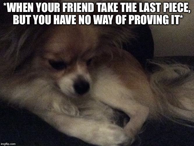 Sad dog | *WHEN YOUR FRIEND TAKE THE LAST PIECE, BUT YOU HAVE NO WAY OF PROVING IT* | image tagged in sad dog | made w/ Imgflip meme maker