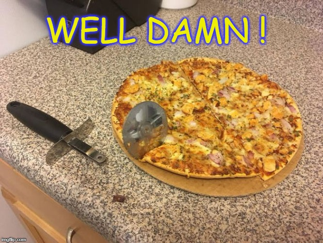 bad time | WELL DAMN ! | image tagged in well damn,pizza | made w/ Imgflip meme maker