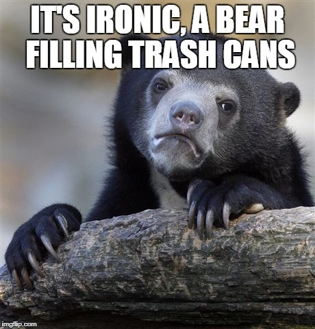 Confession Bear Meme | IT'S IRONIC, A BEAR FILLING TRASH CANS | image tagged in memes,confession bear | made w/ Imgflip meme maker