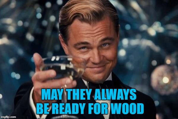 Leonardo Dicaprio Cheers Meme | MAY THEY ALWAYS BE READY FOR WOOD | image tagged in memes,leonardo dicaprio cheers | made w/ Imgflip meme maker