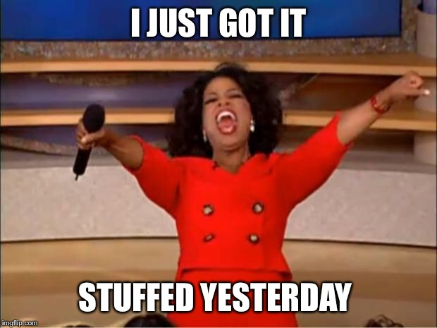 Oprah You Get A Meme | I JUST GOT IT STUFFED YESTERDAY | image tagged in memes,oprah you get a | made w/ Imgflip meme maker