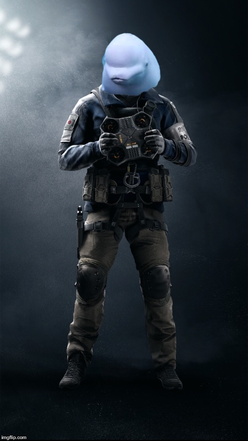 The true Echo (R6 Siege) | image tagged in rainbow,gaming,video games | made w/ Imgflip meme maker