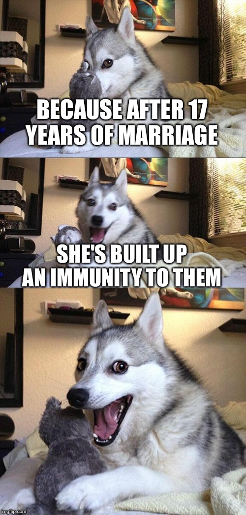 Bad Pun Dog Meme | BECAUSE AFTER 17 YEARS OF MARRIAGE SHE'S BUILT UP AN IMMUNITY TO THEM | image tagged in memes,bad pun dog | made w/ Imgflip meme maker
