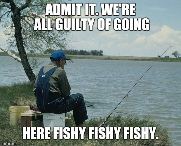ADMIT IT. WE'RE ALL GUILTY OF GOING HERE FISHY FISHY FISHY. | image tagged in here fishy | made w/ Imgflip meme maker