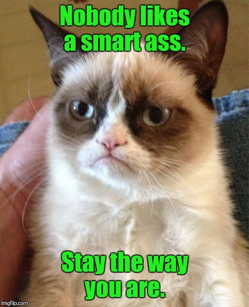 Grumpy Cat Meme | Nobody likes a smart ass. Stay the way you are. | image tagged in memes,grumpy cat | made w/ Imgflip meme maker
