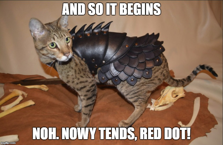 AND SO IT BEGINS NOH. NOWY TENDS, RED DOT! | image tagged in humor,cats,game of thrones,armor,funny | made w/ Imgflip meme maker