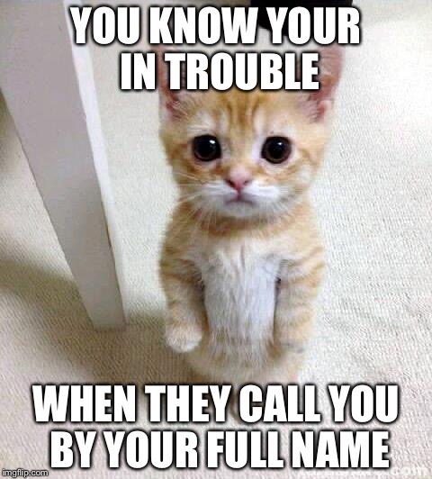 Cute Cat Meme | YOU KNOW YOUR IN TROUBLE WHEN THEY CALL YOU BY YOUR FULL NAME | image tagged in memes,cute cat | made w/ Imgflip meme maker