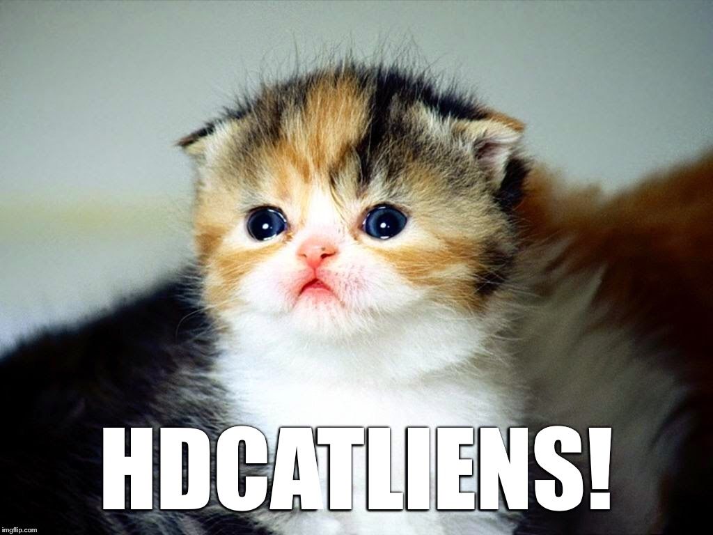 HDCATLIENS! | image tagged in memes,cat,ancient aliens,hd memes | made w/ Imgflip meme maker