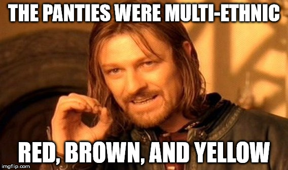 One Does Not Simply Meme | THE PANTIES WERE MULTI-ETHNIC RED, BROWN, AND YELLOW | image tagged in memes,one does not simply | made w/ Imgflip meme maker