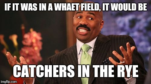 Steve Harvey Meme | IF IT WAS IN A WHAET FIELD, IT WOULD BE CATCHERS IN THE RYE | image tagged in memes,steve harvey | made w/ Imgflip meme maker