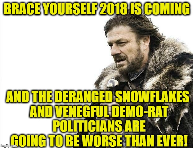 Brace Yourselves X is Coming Meme | BRACE YOURSELF 2018 IS COMING AND THE DERANGED SNOWFLAKES AND VENEGFUL DEMO-RAT POLITICIANS ARE GOING TO BE WORSE THAN EVER! | image tagged in memes,brace yourselves x is coming | made w/ Imgflip meme maker