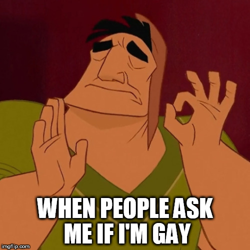 Kuzco just right |  WHEN PEOPLE ASK ME IF I'M GAY | image tagged in kuzco just right,emperor,gay,just right,perfect,bruh | made w/ Imgflip meme maker