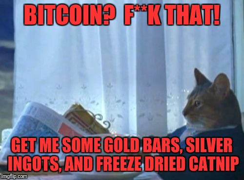 I Should Buy A Boat Cat Meme | BITCOIN?  F**K THAT! GET ME SOME GOLD BARS, SILVER INGOTS, AND FREEZE DRIED CATNIP | image tagged in memes,i should buy a boat cat | made w/ Imgflip meme maker