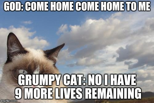 Grumpy Cat Sky Meme | GOD: COME HOME COME HOME TO ME GRUMPY CAT: NO I HAVE 9 MORE LIVES REMAINING | image tagged in memes,grumpy cat sky,grumpy cat | made w/ Imgflip meme maker