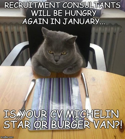 Hungry Cat | RECRUITMENT CONSULTANTS WILL BE HUNGRY AGAIN IN JANUARY... IS YOUR CV MICHELIN STAR OR BURGER VAN?! | image tagged in hungry cat | made w/ Imgflip meme maker