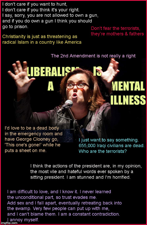 Rosie O'Donnell's madness | image tagged in rosie o'donnell,liberalism is a mental disorder,current events,politics lol,funny memes,donald trump approves | made w/ Imgflip meme maker