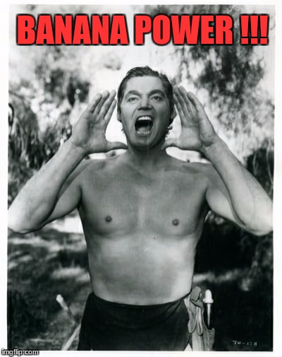 Tarzan of the Jungle | BANANA POWER !!! | image tagged in tarzan hodls,banana power | made w/ Imgflip meme maker