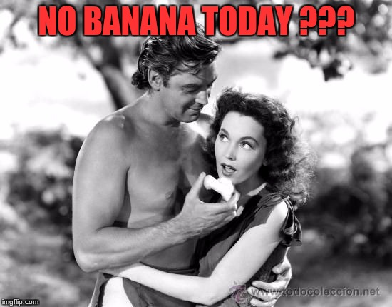 Tarzan of the Jungle | NO BANANA TODAY ??? | image tagged in tarzan of the jungle | made w/ Imgflip meme maker