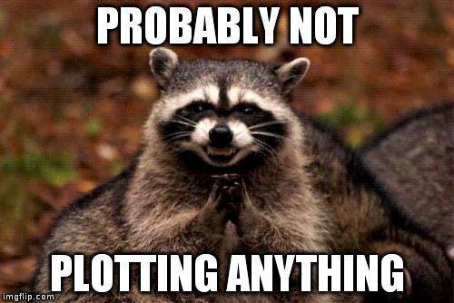 Evil Plotting Raccoon Meme | PROBABLY NOT PLOTTING ANYTHING | image tagged in memes,evil plotting raccoon | made w/ Imgflip meme maker