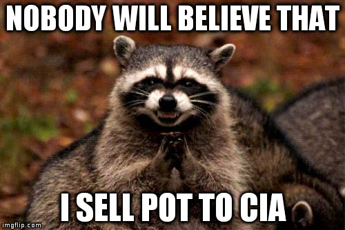 Evil Plotting Raccoon Meme | NOBODY WILL BELIEVE THAT I SELL POT TO CIA | image tagged in memes,evil plotting raccoon | made w/ Imgflip meme maker
