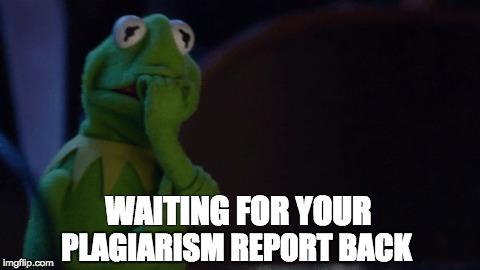 Nervous Kermit | WAITING FOR YOUR PLAGIARISM REPORT BACK | image tagged in nervous kermit | made w/ Imgflip meme maker