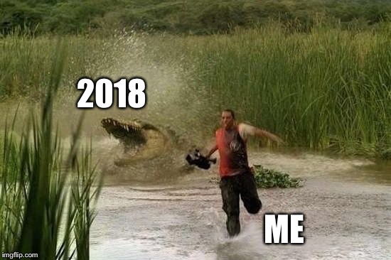 Happy new year | 2018 ME | image tagged in 2018 | made w/ Imgflip meme maker