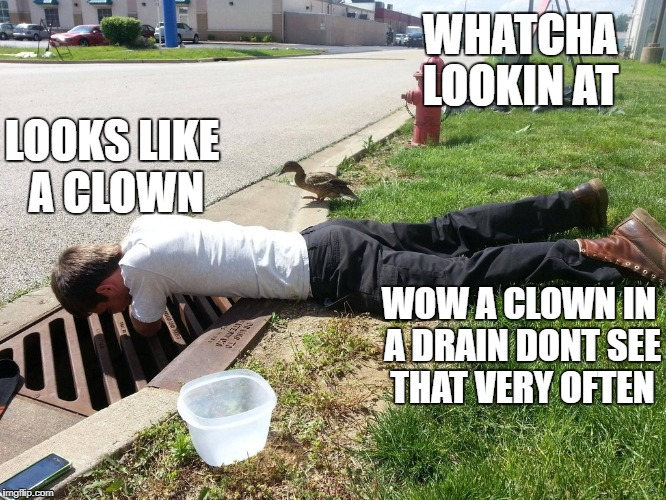 talikng duck | WHATCHA LOOKIN AT WOW A CLOWN IN A DRAIN DONT SEE THAT VERY OFTEN LOOKS LIKE A CLOWN | image tagged in what are you talking about | made w/ Imgflip meme maker