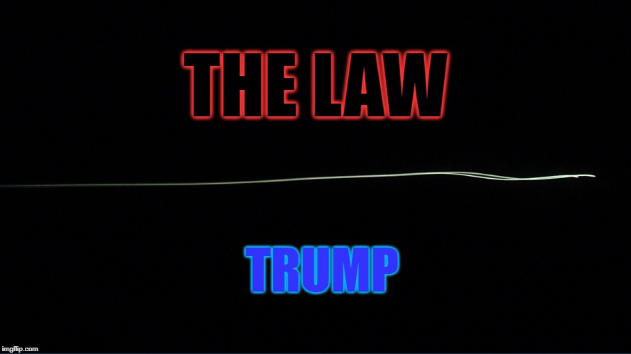 Trump Is Not Above The Law | THE LAW TRUMP | image tagged in trump,obstruction of justice,trump russia collusion,mueller,law | made w/ Imgflip meme maker