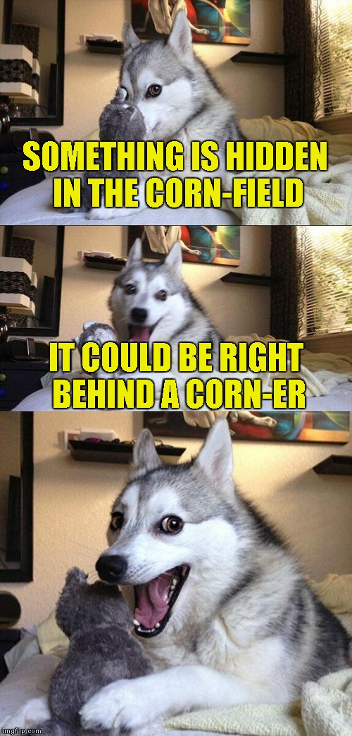 A meme corny enough for both mine and IMGFlip taste | SOMETHING IS HIDDEN IN THE CORN-FIELD IT COULD BE RIGHT BEHIND A CORN-ER | image tagged in memes,bad pun dog,corn,powermetalhead,corner,funny | made w/ Imgflip meme maker