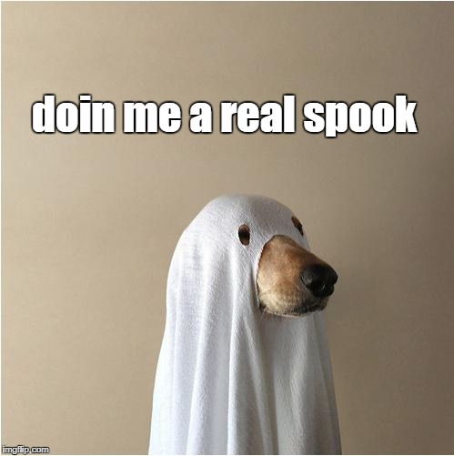 Doin me a spook | doin me a real spook | image tagged in ghost doge | made w/ Imgflip meme maker