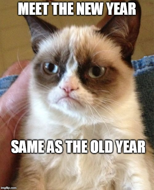 Grumpy Cat Meme | MEET THE NEW YEAR SAME AS THE OLD YEAR | image tagged in memes,grumpy cat,happy new year | made w/ Imgflip meme maker