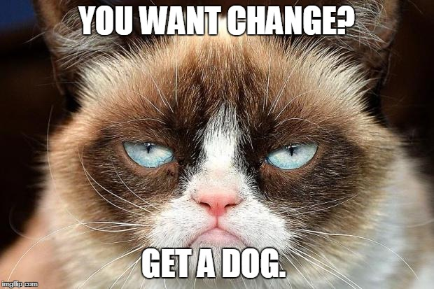 Grumpy Cat Not Amused Meme | YOU WANT CHANGE? GET A DOG. | image tagged in memes,grumpy cat not amused,grumpy cat | made w/ Imgflip meme maker