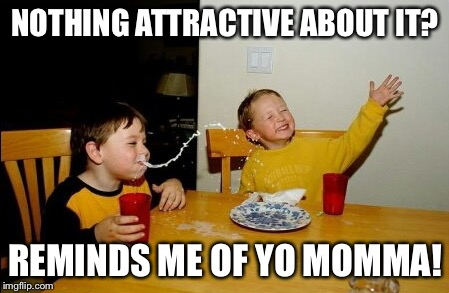 NOTHING ATTRACTIVE ABOUT IT? REMINDS ME OF YO MOMMA! | made w/ Imgflip meme maker