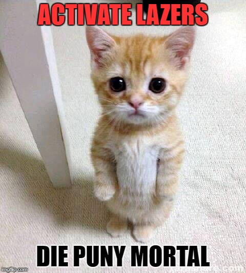 Cute Cat Meme | ACTIVATE LAZERS DIE PUNY MORTAL | image tagged in memes,cute cat | made w/ Imgflip meme maker
