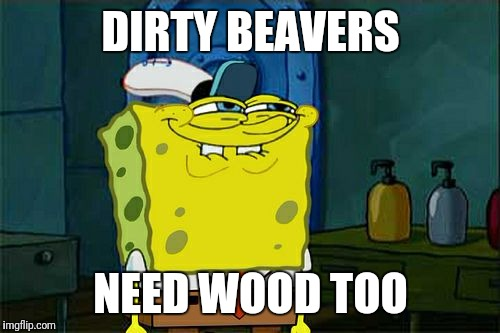 Dont You Squidward Meme | DIRTY BEAVERS NEED WOOD TOO | image tagged in memes,dont you squidward | made w/ Imgflip meme maker