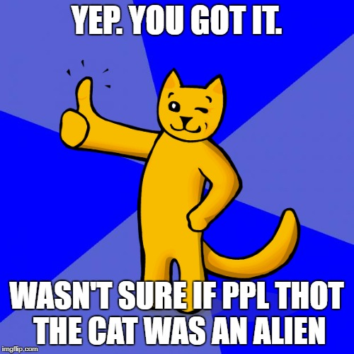 YEP. YOU GOT IT. WASN'T SURE IF PPL THOT THE CAT WAS AN ALIEN | made w/ Imgflip meme maker