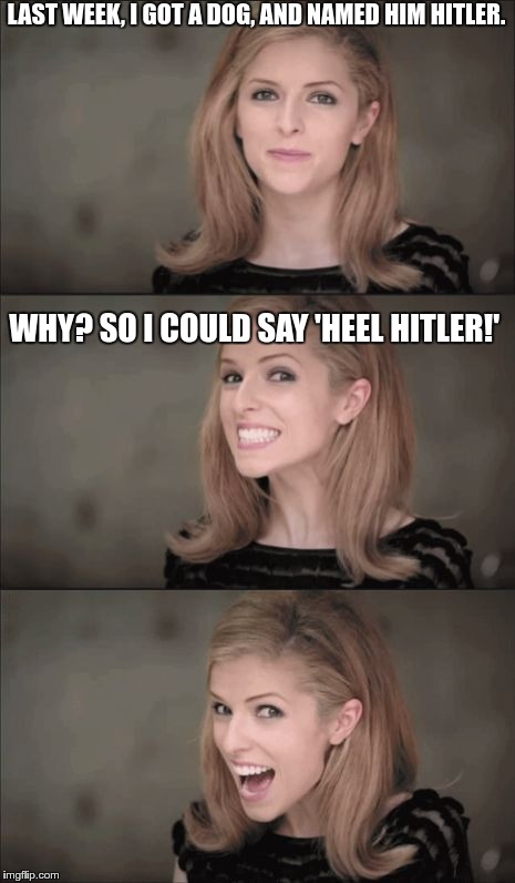 Bad Pun Anna Kendrick Meme | LAST WEEK, I GOT A DOG, AND NAMED HIM HITLER. WHY? SO I COULD SAY 'HEEL HITLER!' | image tagged in adolf hitler,hitler,bad pun anna kendrick,funny,memes | made w/ Imgflip meme maker