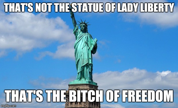 Bitch of freedom | THAT'S NOT THE STATUE OF LADY LIBERTY THAT'S THE B**CH OF FREEDOM | image tagged in lady liberty,bitch of freedom,america,fuuny,bitch | made w/ Imgflip meme maker