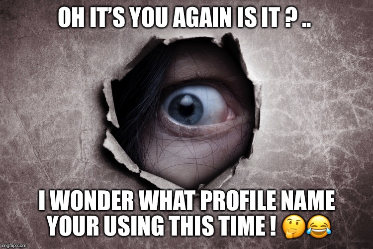 Facebook stalkers | OH IT'S YOU AGAIN IS IT ? .. I WONDER WHAT PROFILE NAME YOUR USING THIS TIME !  | image tagged in stalker,facebook,fake friends | made w/ Imgflip meme maker
