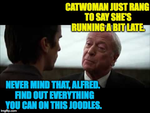 CATWOMAN JUST RANG TO SAY SHE'S RUNNING A BIT LATE. NEVER MIND THAT, ALFRED.  FIND OUT EVERYTHING YOU CAN ON THIS JOODLES. | made w/ Imgflip meme maker