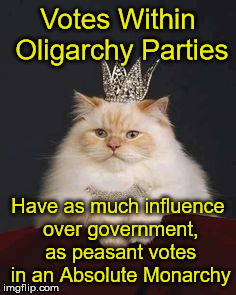 All Capitalist Parties in the US are own & ran by the same Oligarchy   | Votes Within Oligarchy Parties Have as much influence over government, as peasant votes in an Absolute Monarchy | image tagged in cat crown,democrats,republicans,libertarian,oligarchy | made w/ Imgflip meme maker
