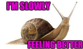 I'M SLOWLY FEELING BETTER | image tagged in snail | made w/ Imgflip meme maker