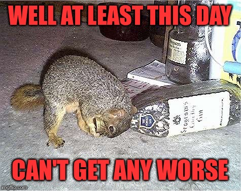 Frustrated Squirrel | WELL AT LEAST THIS DAY CAN'T GET ANY WORSE | image tagged in frustrated squirrel | made w/ Imgflip meme maker
